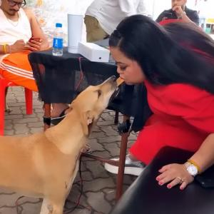 Bharti Singh with pet dogs