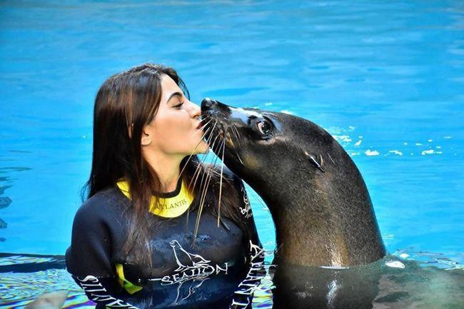 Nikki Tamboli dolphin