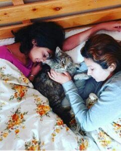 Sonali phogat cat