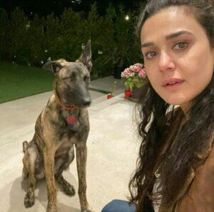 Preity Zinta pet dog
