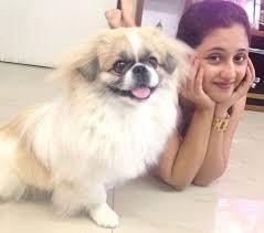 Rashami Desai pet dog Oreo