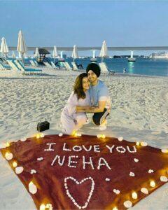 rohanpreet singh honeymoon