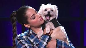 Lilly Singh's  dog appeared as a guest on her show A Little Late with Lilly